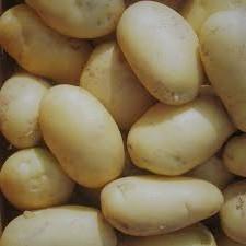 15 minute potato curry Rasaaloo
